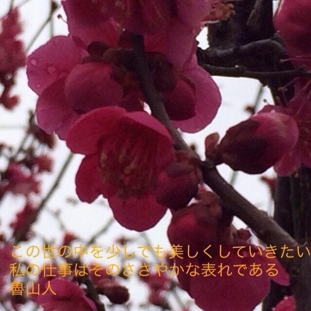20140227-144847.jpg